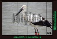 EOS5D3-140518.jpg