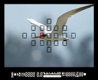 afp-change-140518.jpg