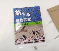 book-190219.jpg