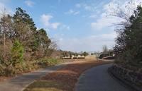 daibtsu-200103.jpg