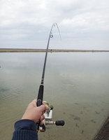 fish-150207.jpg