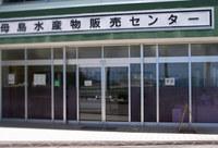 hh-kame-130601.jpg