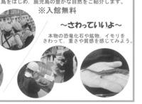 ido_haku2-191211.jpg