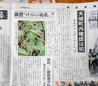 news-p-amami-180219.jpg