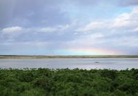 rainbow-161021.jpg