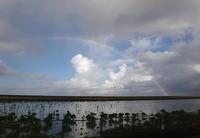 rainbow-190927.jpg