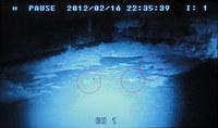 rec-120217.jpg