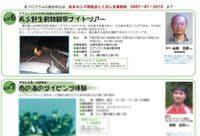 shimahaku-110715.jpg