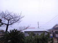 thunder-am0300-140718.jpg